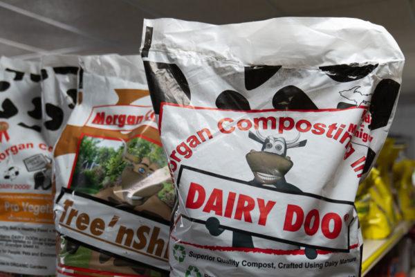 dairy-doo-2